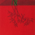 Bamboo, 1996